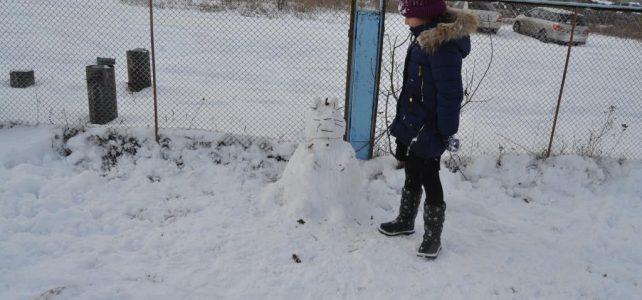 Акция «Снежный друг»
